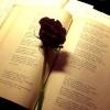 Стихи любимому парню о любви. Оригинальные строки для признания