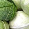 Витамины содержащиеся в капусте