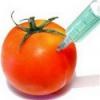 Влияние ГМО на здоровье человека, репродуктивность