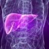 Воспаление печени: симптомы, лечение, питание