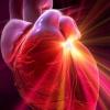 Врожденные пороки сердца триады тетрады пентады