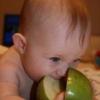 Введение прикорма при грудном вскармливании яблоко