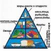 Здоровье и здоровое питание, значение питания для здоровья человека