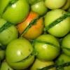 Зеленые помидоры по грузински