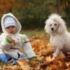Значение прогулок для здоровья детей