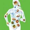 Значение рационального питания для здоровья человека